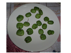 Kiwi Fruit on plate.png